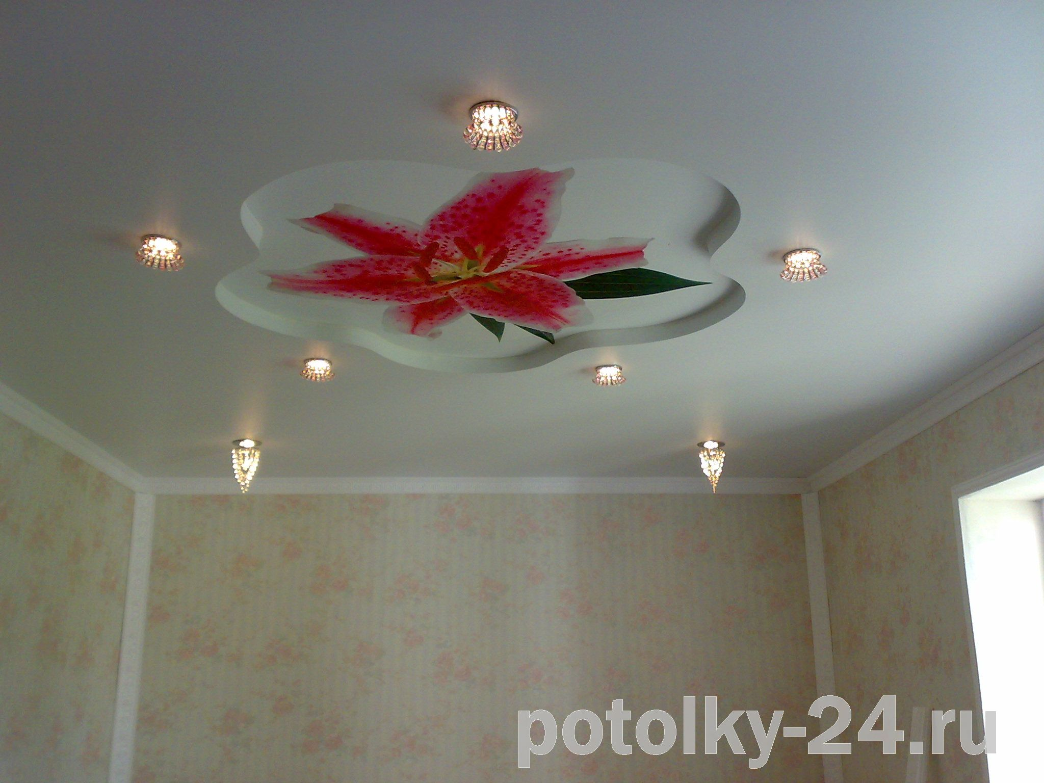 Фото цветков из гкл на потолке